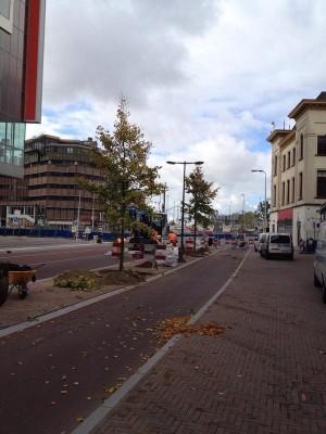 LindenVburg1