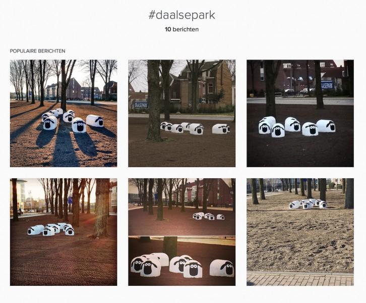 InstagramhitSchaapjesDaalsepark