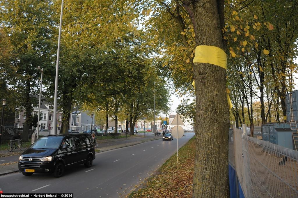 Gele bandera: begin Daalsepark